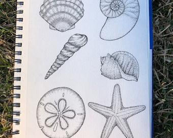 Pointillism sea shells