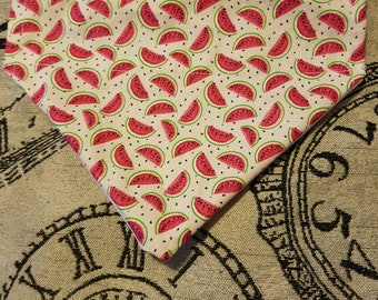 1 in a melon dog bandana / over the collar /dog accessory