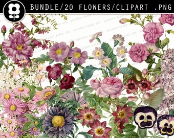 PURPLE Vintage Flowers Clipart Digital Flowers PNG Transparent Background Clip Art Flowers, Vintage Illustrations Instant Download 2507