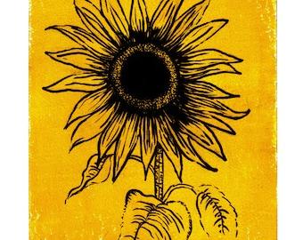 Sunflower, Fineliner print