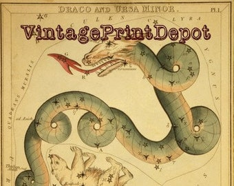 Draco and Ursa Minor, Ursa Minor, Zodiac Sign Art, Ursa Minor Constellation, Horoscope, Astrology Art, Galaxy Art, Mythological Art