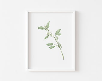 Seeded Eucalyptus Art Print- Watercolor- 8x10- 118lb Cotton Paper- Wall Art- One Stem