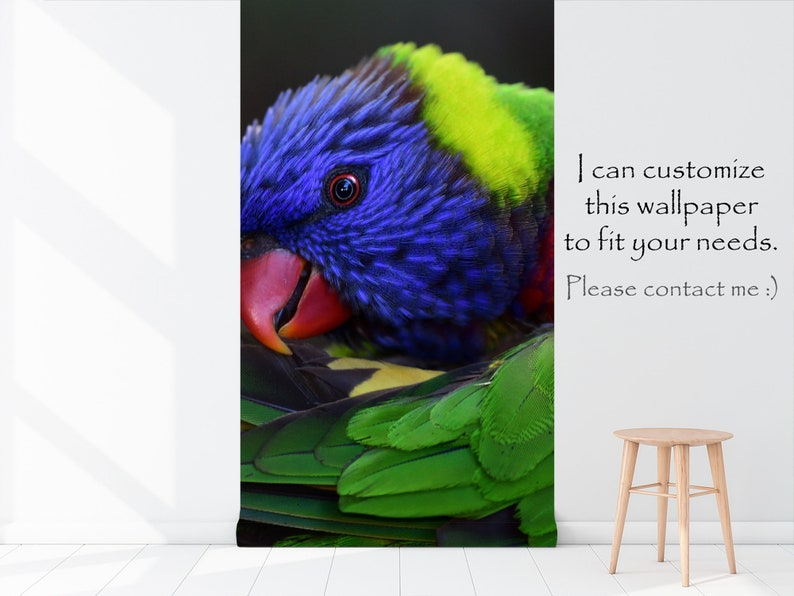 peel and stick floral wall mural self adhesive Wallpaper with a colorful parrot