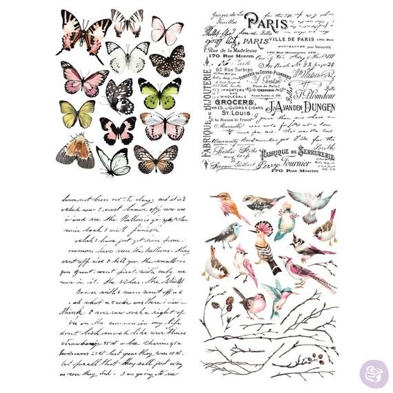 Redesign Transfer by Prima Rub on transfer; furniture transfer Parisian Butterflies Transfer