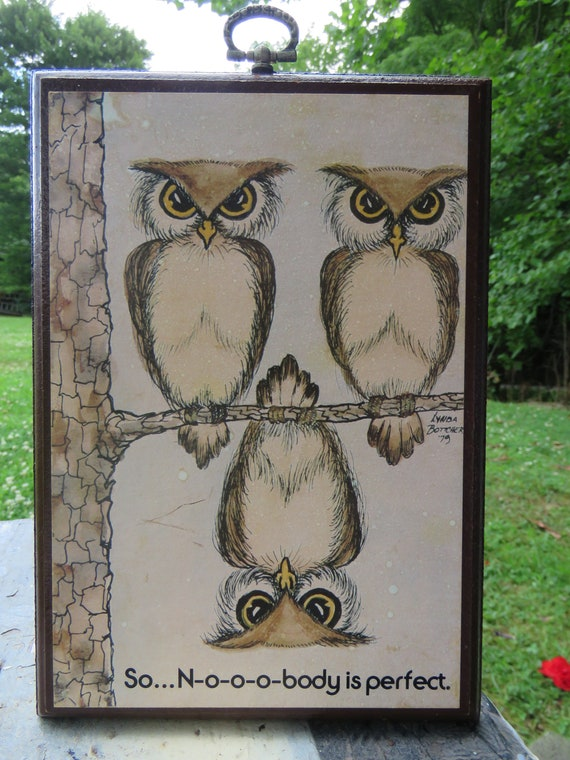 Nobody/'s Perfect one is upside down Owls 3 on branch