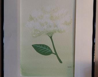 Original framed acrylic painting of a hydrangea 'Puffball'