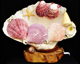 Sea Shell Atelie
