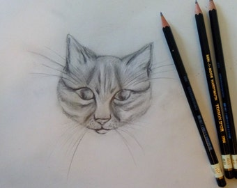Drawing original cat head