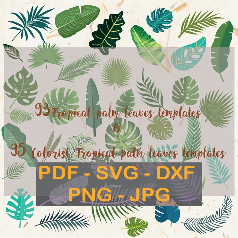 93 Paper Leaves Templates Pdf Svg Dxf Jpg Png Tropical Palm Leaves Cricut Silhouette