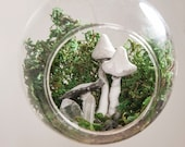Enchanted Fairy Terrarium, with Mushrooms, Crystals and Green Moss, in Glass Hanging Globe. Nursery Decor, Kids Rooms, Magical Decor 5