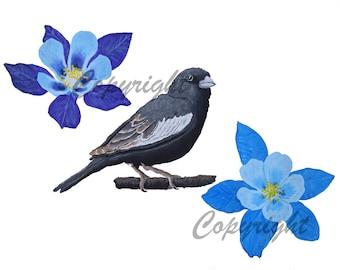 State Birds and Flowers Miniature Mini Plate COLORADO Lark Bunting Columbine