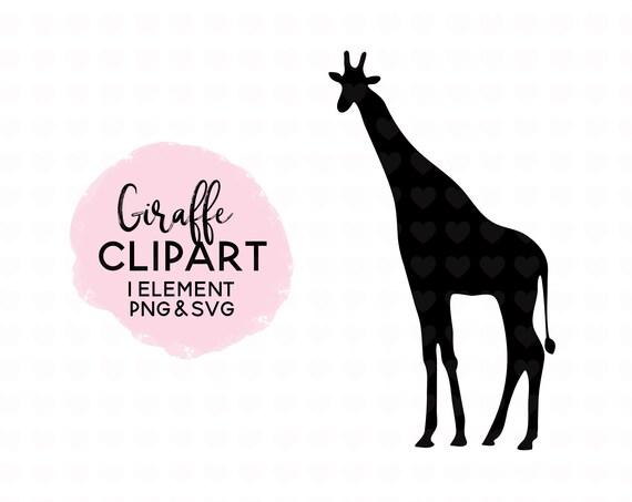 Giraffe Clipart Giraffe Svg File Giraffe Png File Etsy