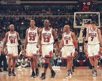1995–96 Chicago Bulls season