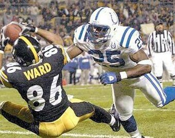 0685dc851 2002 Pittsburgh Steelers AFC Divisional Season on DVD - Hines Ward