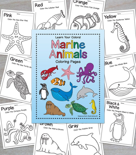 Learning Colors: Marine Animals Coloring Pages