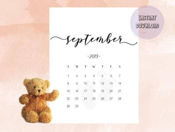 Gutscheincode Zooplus September 2019