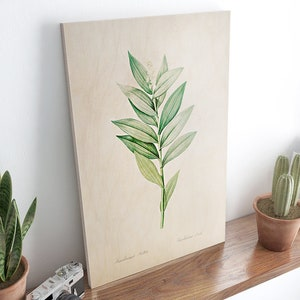 Vintage botanical illustration poster printed on wood Table Deco Size A3  A4 Magnolia Plant