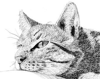 Custom Pet Portrait | Cat Portrait | Pen and Ink | Personalized Gift | Hand Drawn Illustration