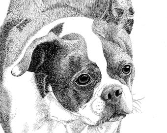 Custom Pet Portrait | Dog Portrait | Pen and Ink | Personalized Gift | Hand Drawn Illustration