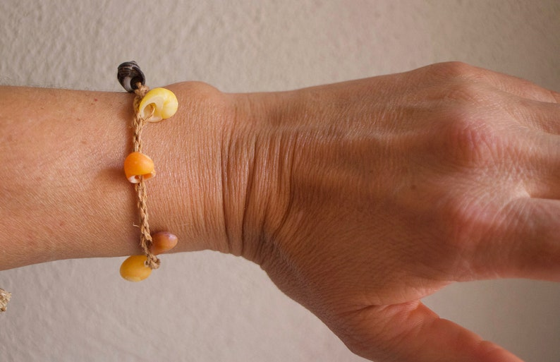 Decorated with primitive littorine shell bracelet strung in image 0