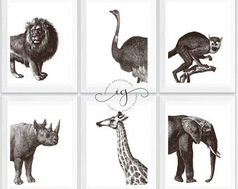 Set of 6 A4 Vintage Safari Animal Art Prints - Nursery Decoration including Lion, Ostrich, Monkey, Rhino, Giraffe, and Elephant