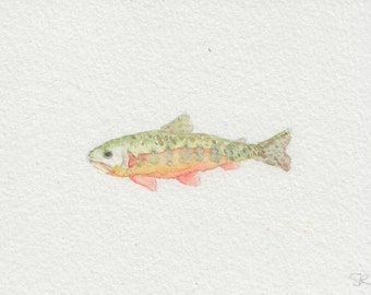 Golden Trout, Mini watercolor painting