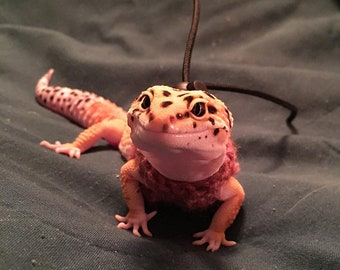 Leopard Gecko Small Lizard Harness