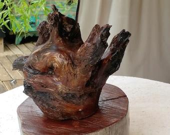 Arizona Cypress Root Sculpture