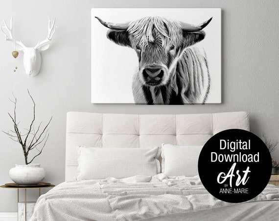 Colourful Long Haired Highland Cow Art Printed on Canvas Wall DIY Home Decor