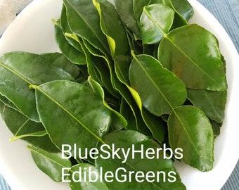 Blue Sky Herbs