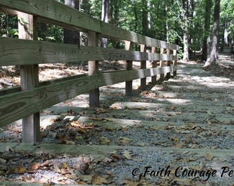 Stairs in the woods photo