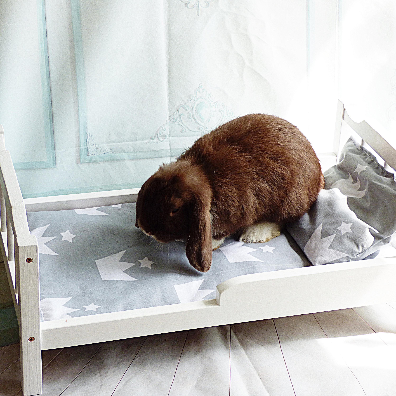Rabbit bed built in shower mixer valves