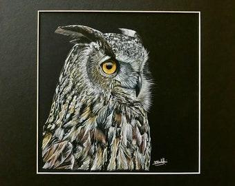 Original Artwork - Owl