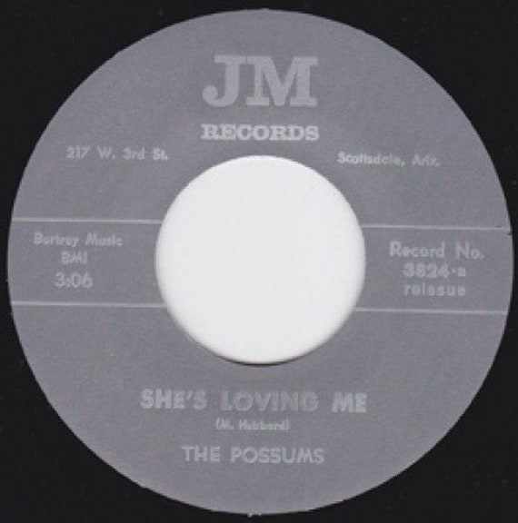 Repro garage punk 6O's - 45t/7' No sleeve- Possums- She's loving me/King in his world