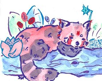 Red Panda VI Art Print