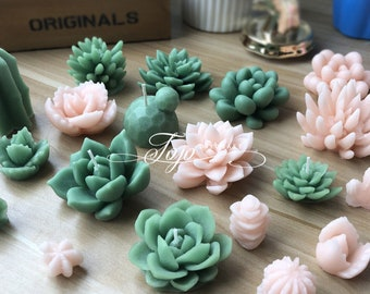 Succulent Plants Candle Silicone Mold-Succulents Candle Molds-Succulent Plant Resin Mold-Cactus Flower Plaster Mold-Candle Holder Decor Mold
