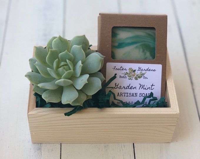 Featured listing image: Soap and Succulent Gift Set