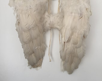 Rare antique French feather angel wings