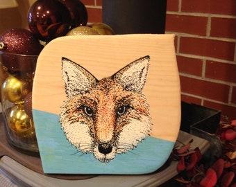 Friendly Faced Fox