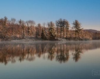 Early Winter Trees on the Lake