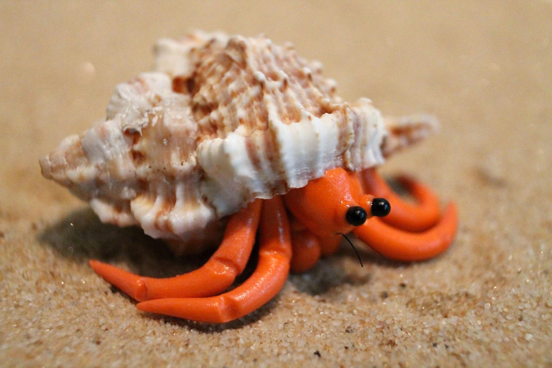 crab origami – do origami | 2000x3000