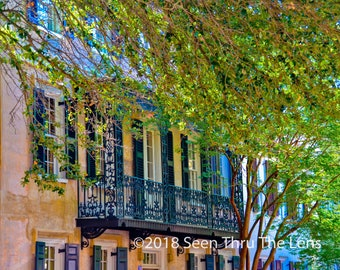Quintessential Charleston - Photographic Print