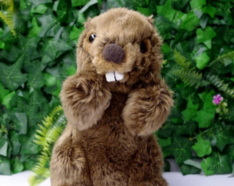 Groundhog Stuffed Animal Plush Toy