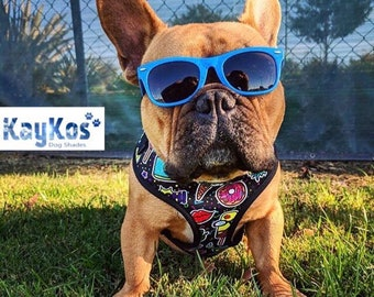 Dog Sunglasses (Medium)