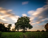 Hilden landscape with tree photo print on canvas