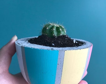 Round Handmade Colourful Concrete Planter for succulents and cacti - The Beach Ball