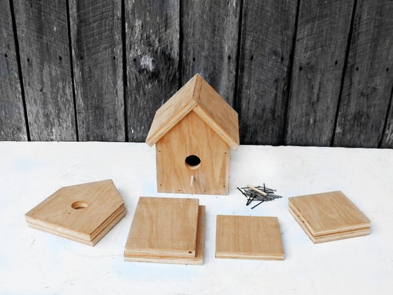 Birdhouse Kit Toolbox Kit Kits For Kids Beginners Etsy
