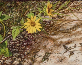 Original Hand Painted Acrylic Painting of Sunflower on a Dirt Road Near Abilene, Texas