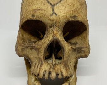 Borneo Headhunter Trophy Skull replica with snake motif