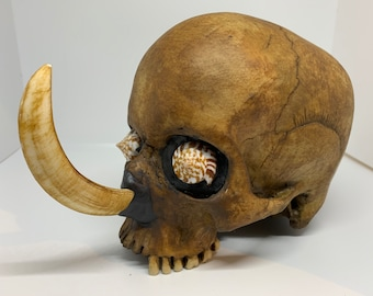Headhunter Trophy Skull replica with boar tusk and shell eyes